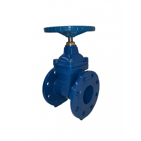 80mm Flanged Epoxy Coated Ductile Iron Gate Valve
