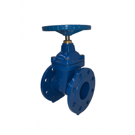 100mm Flanged Epoxy Coated Ductile Iron Gate Valve