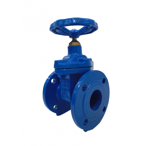65mm Flanged Epoxy Coated Ductile Iron Gate Valve